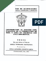 Garabito Garcia Estela Alexandra DOBLE REYNA