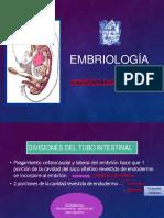 EMBRIOLOGIA A. DIGESTIVO