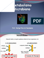 009 - 2009 Aula 8 e 9 Microbiologia_Metabolismo Nova
