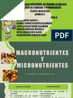 Macronutrientes y Micronutrientes Quimica II Equipo 1 258-A
