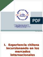PERU CHILE CRISTIAN MATURANA