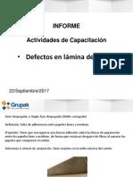 18 Informe. Defectos en Láminas de Cartón