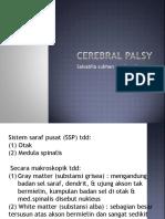92296527 Cerebral Palsy Ppt