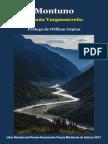 """""""MONTUNO"""". Hernán Vargascarreño. 2a edición, ampliada. Ediciones Exilio."""