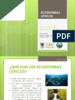 Ecosistema Lótico