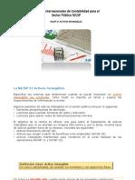 5. NICSP 31 ACTIVOS INTANGIBLES.pptx