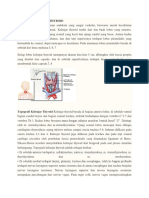Anatomi Kelenjar Thyroid
