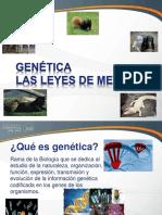 Biologia Genetica y Leyes de Mendel