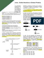 BORELLA 3 ANO Exercicios Extras Acidos Nucleicos e Sintese Proteica