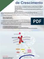 Fatores-de-Crescimento.pdf
