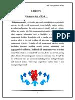 245171132-Risk-Management-in-Banks-2.doc