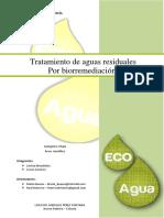 Ecoagua (1)