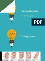 4.Janin_2