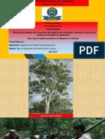 Sustentacion proyecto maestria en Ingenieria Civil.pptx
