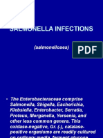 salmonellainfections-111117103331-phpapp01.pptx