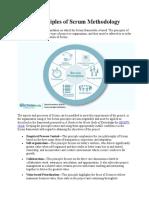 Principles of Scrum Methodology