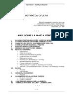 MAGIA-DE-LAS-HIERBAS-2.pdf
