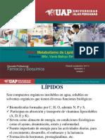 Bioquimica 2- Lipidos I