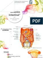 Oclusión Intestinal