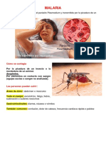 enfermedades tranmitidas por  vectores