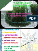 5. TECNICAS DE ESTERILIZACION Y MANIPULACION ASEPTICA.pdf