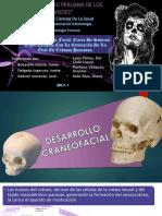 Desarrollo Craneofacial-1 (2).pptx