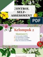 control self assessment.pptx