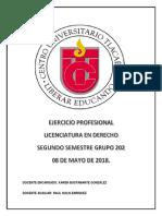 Ejercicio Profesional 202