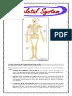 Human System Lists