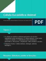 Célula Eucariótica Animal