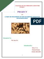 Mercy-project Ant's Diversity