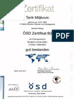 German B2 OSD