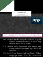 asam nukleat kelompok 8 .pptx