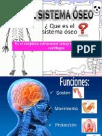Esqueleto Avance 1