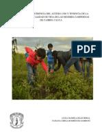 Analisis de La Incidencia Del Acceso, Uso y Tenencia de La Tierra Sobre La Calidad de Vidad de Las Mujeres Campesinas de Cajibio, Cauca