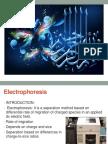 Electrophoresis - Copy