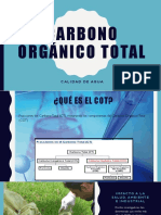 Carbono Orgánico Total