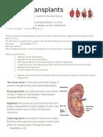 kidney transplants handout
