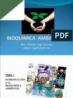 BIOQUIMICA AMBIENTAL. semana 1.ppt