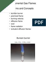Fundamental Gas Flames FPK1 2012