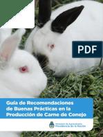 170125_Guia de Recomendaciones de BP en Produccion de Carne de CONEJO