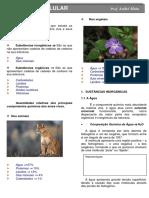resumo bioquimica.pdf