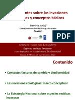 1.3.1-seminario-presentacion-01