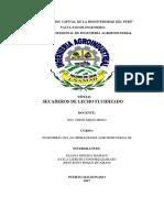 LECHOS FLUIDIZADOS.docx
