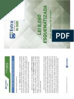LEI-8080-ESQUEMATIZADA1.pdf
