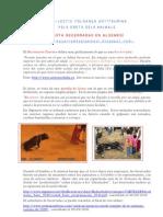 Algemesí 10 Dossier premsa castellà