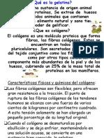 Gelatina - Proceso