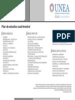 Licenciatura Ingeniería Industrial_UNEA.pdf