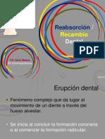 189780702-Rizolisis-Dental-2.ppt