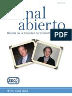 238674036-25-revista.pdf